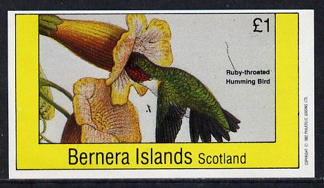 Bernera 1982 Humming Bird imperf souvenir sheet (�1 value) unmounted mint