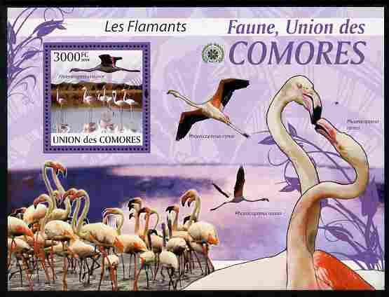 Comoro Islands 2009 Flamingos perf m/sheet unmounted mint Michel BL 524