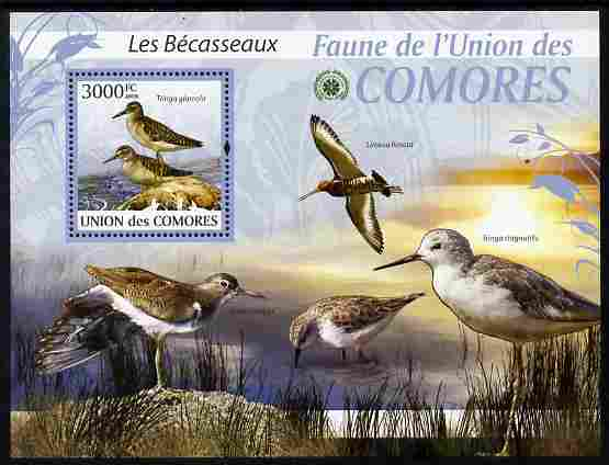 Comoro Islands 2009 Sandpipers perf m/sheet unmounted mint Michel BL 517