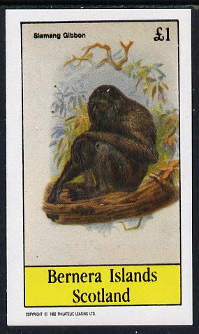Bernera 1982 Primates (Siamang Gibbon) imperf souvenir sheet (�1 value) unmounted mint