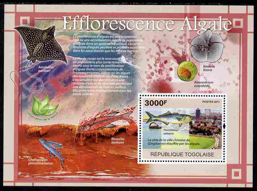 Togo 2011 Environment - Algal Blooms - Fish perf s/sheet unmounted mint
