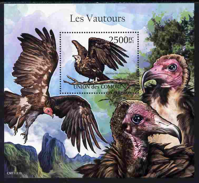 Comoro Islands 2011 Vultures perf m/sheet unmounted mint