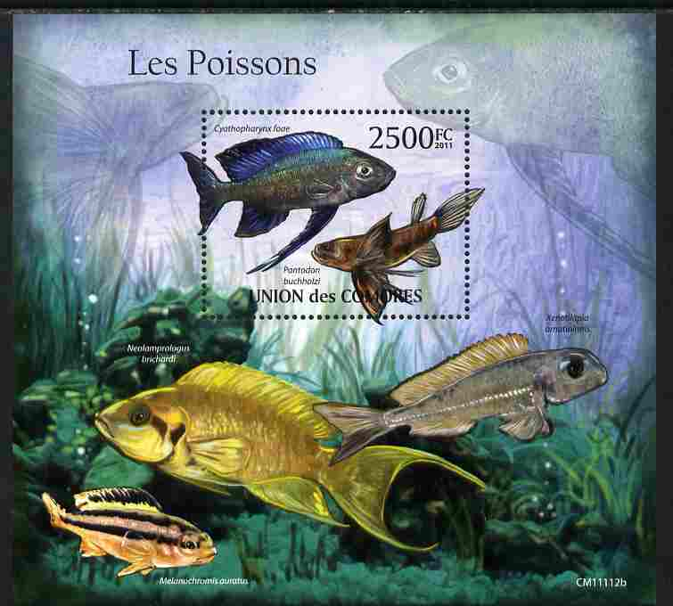 Comoro Islands 2011 Fish perf m/sheet unmounted mint