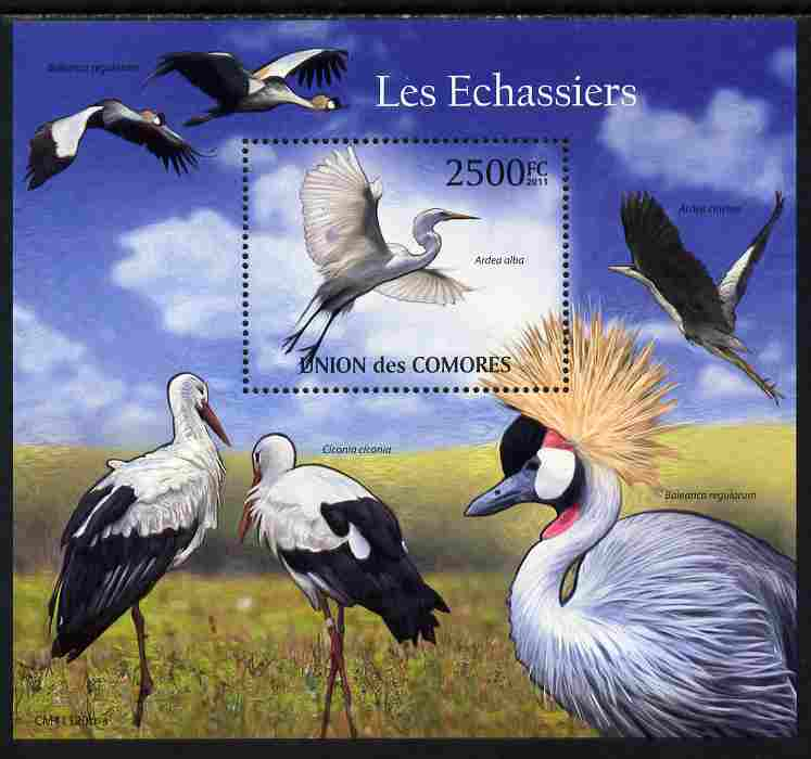 Comoro Islands 2011 Wading Birds perf s/sheet unmounted mint