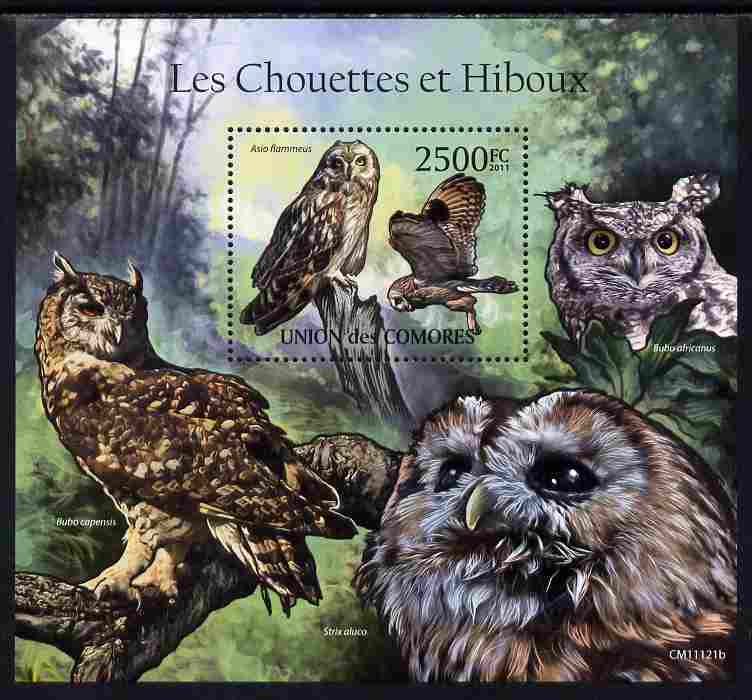 Comoro Islands 2011 Owls #1 perf s/sheet unmounted mint