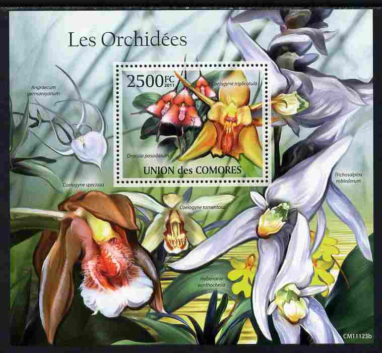 Comoro Islands 2011 Orchids perf s/sheet unmounted mint