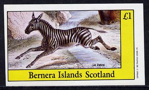 Bernera 1982 Animals (Zebra) imperf souvenir sheet (�1 value) unmounted mint