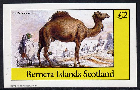 Bernera 1982 Animals (Camel) imperf deluxe sheet (�2 value) unmounted mint