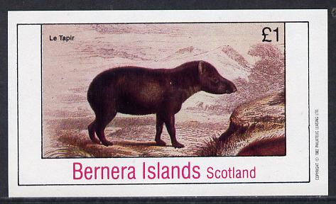 Bernera 1982 Animals (Le Tapir) imperf souvenir sheet (�1 value) unmounted mint
