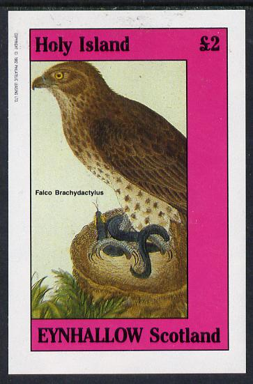 Eynhallow 1982 Falcon imperf deluxe sheet (�2 value) unmounted mint