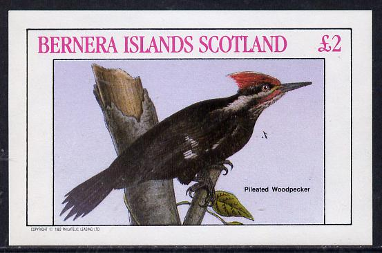 Bernera 1982 Woodpecker imperf deluxe sheet (�2 value) unmounted mint