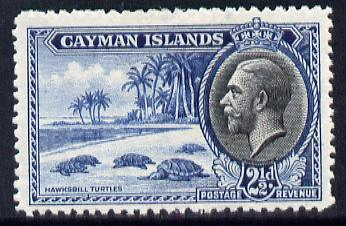 Cayman Islands 1935 KG5 Pictorial - Hawksbill Turtles 2.5d blue & black mounted mint, SG 101