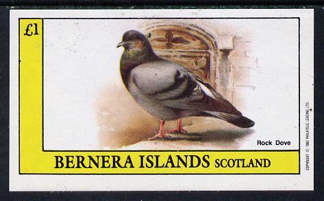 Bernera 1982 Rock Dove imperf souvenir sheet (�1 value) unmounted mint, stamps on birds, stamps on doves