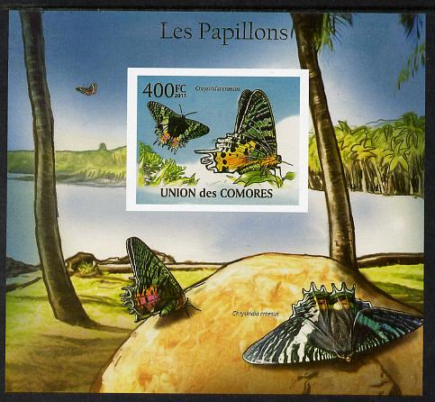 Comoro Islands 2011 Butterflies #7 imperf m/sheet unmounted mint. Note this item is privately produced and is offered purely on its thematic appeal, it has no postal validity