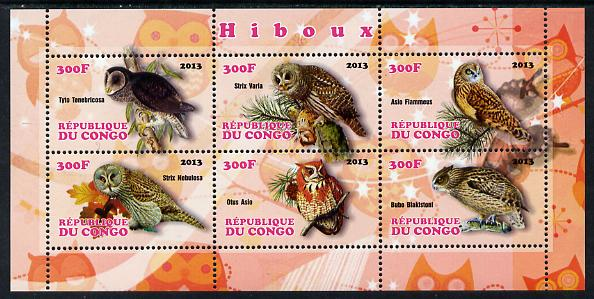 Congo 2013 Owls perf sheetlet containing 6 values unmounted mint