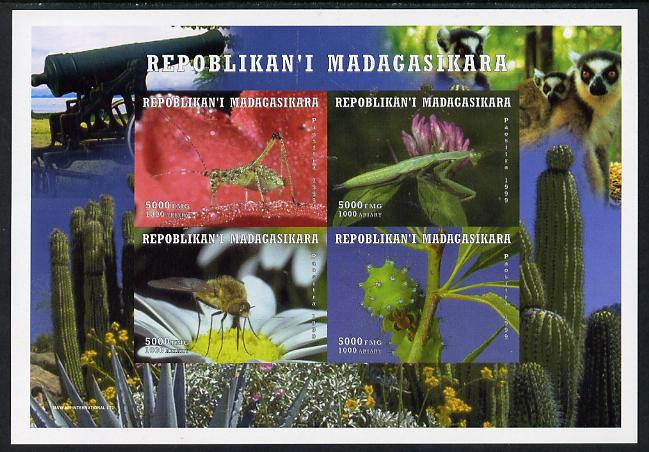 Madagascar 1999 Insects imperf sheetlet containing 4 values unmounted mint. Note this item is privately produced and is offered purely on its thematic appeal