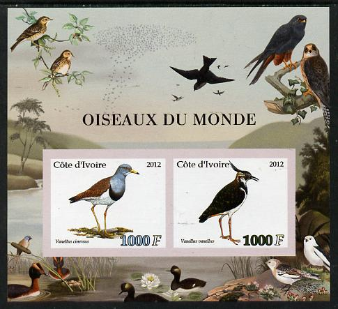 Ivory Coast 2012 Birds of the World #2 imperf sheetlet containing 2 values unmounted mint