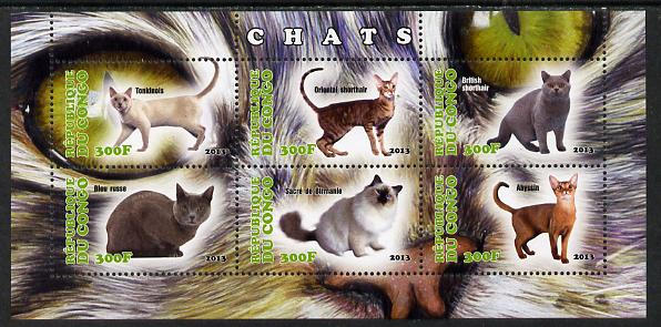 Congo 2013 Domestic Cats #2 perf sheetlet containing six values unmounted mint