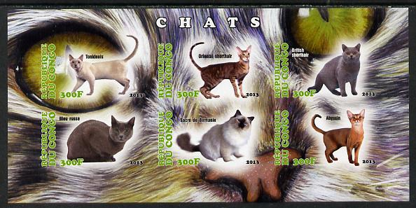 Congo 2013 Domestic Cats #2 imperf sheetlet containing six values unmounted mint