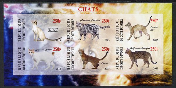 Ivory Coast 2013 Domestic Cats #3 imperf sheetlet containing 6 values unmounted mint