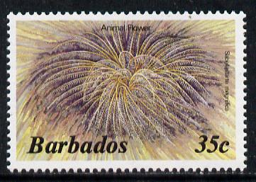 Barbados 1986 Animal Flower 35c (from Marine Life def set) without imprint date unmounted mint, SG 798A