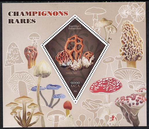 Madagascar 2014 Rare Mushrooms perf deluxe sheet containing one diamond shaped value unmounted mint