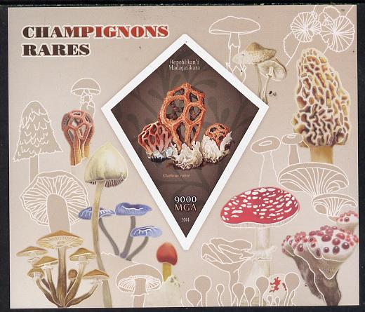 Madagascar 2014 Rare Mushrooms imperf deluxe sheet containing one diamond shaped value unmounted mint
