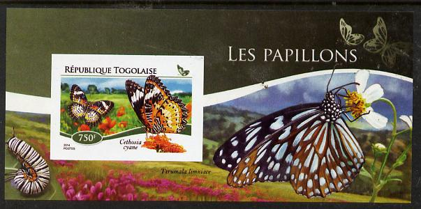 Togo 2015 Butterflies #01 imperf s/sheet unmounted mint. Note this item is privately produced and is offered purely on its thematic appeal