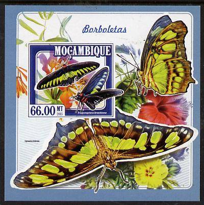 Mozambique 2015 Butterflies #4 imperf deluxe sheet unmounted mint. Note this item is privately produced and is offered purely on its thematic appeal
