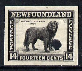 Newfoundland 1941-44 KG6 Newfoundland Dog 14c black imperf PROOF with Waterlow security punch hole, some wrinkles but a scarce KG6 item (as SG 284)
