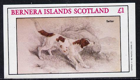 Bernera 1982 Dogs (Setter) imperf souvenir sheet (�1 value) unmounted mint