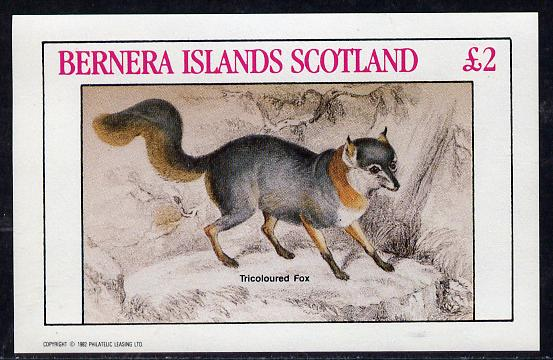 Bernera 1982 Animals (Tricoloured Fox) imperf deluxe sheet (�2 value) unmounted mint
