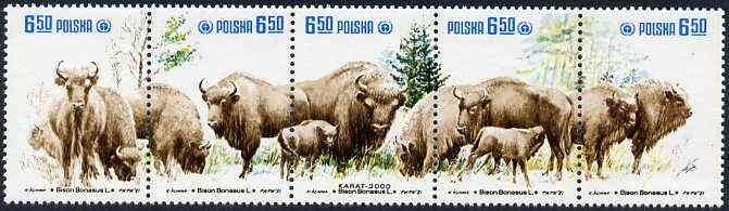 Poland 1981 Protection ofd European Bison se-tenant strip of 5 unmounted mint, SG 2758-62, Mi 2764-68