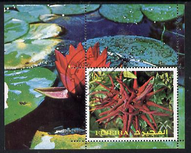 Fujeira 1972 Flowers m/sheet (Mi BL 135A) cto used