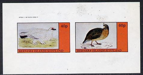 Bernera 1982 Game Birds #1 imperf  set of 2 values (40p & 60p) unmounted mint