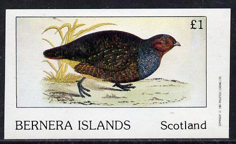 Bernera 1982 Game Birds #1 imperf souvenir sheet (�1 value) unmounted mint