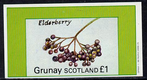 Grunay 1982 Fruits (Elderberry) imperf souvenir sheet (�1 value) unmounted mint