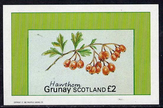 Grunay 1982 Fruits (Hawthorn) imperf deluxe sheet (�2 value) unmounted mint