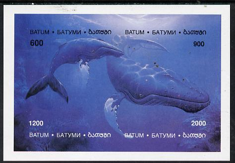 Batum 1994 Whales imperf composite sheetlet containing complete set of 4 values unmounted mint