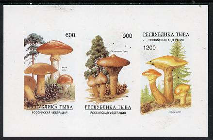 Touva 1997 Mushrooms imperf sheetlet containing complete set of 3 values unmounted mint