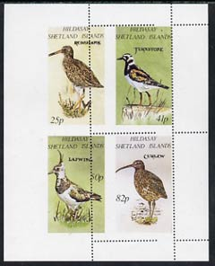 Shetland Islands 1995 Birds perf set of 4 with perforations dramatically misplaced, a superb variety, unmounted mint