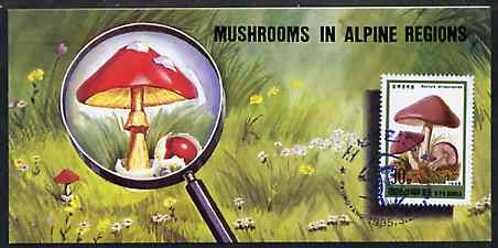Booklet - North Korea 1995 Fungi in Alpine Regions 3 won booklet containing pane of 10 x 30 jons