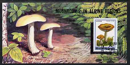 Booklet - North Korea 1995 Fungi in Alpine Regions 4 won booklet containing pane of 10 x 40 jons