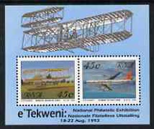 South Africa 1993 Aviation Philatelic Foundation m/sheet unmounted mint