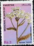 Pakistan 1996 Medicinal Plants 3R Yarrow (Achillea mellofolium) unmounted mint SG 1010
