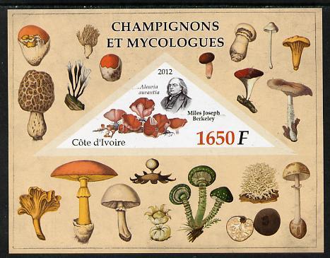 Ivory Coast 2012 Fungi & Mycologists imperf m/sheet containing 1 triangular value unmounted mint