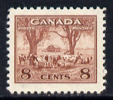 Canada 1942-48 KG6 War Effort 8c Cattle unmounted mint SG 382