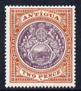 Antigua 1903-07 Crown CC Badge 2d dull purple & brown mounted mint SG 33