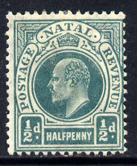 Natal 1904-08 KE7 MCA Postage-Revenue 1/2d blue-green mounted mint SG 146