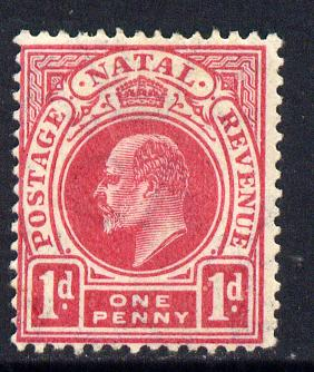 Natal 1904-08 KE7 MCA Postage-Revenue 1d deep carmine mounted mint SG 148